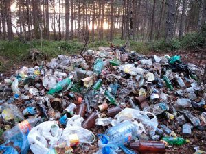 фото мусора на природе