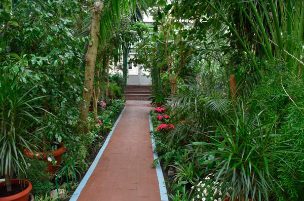 Запорожский ботанический сад