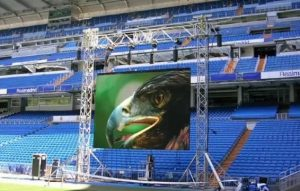 светодиодный экран для стадиона